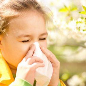 Аллергия у ребенка: как правильно опознать и купировать симптомы заболевания. Варианты лечения причины заболевания (140 фото и видео рекомендации врачей)