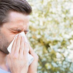 Аллергия у взрослых: причины возникновения, виды, стадии и типы аллергии. Развитие заболевания и варианты лечения (115 фото)