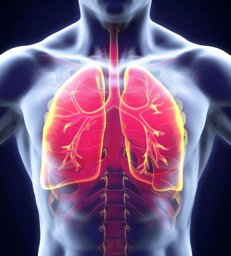 Как выглядят бронхи при бронхиальной астме фото thumbnail