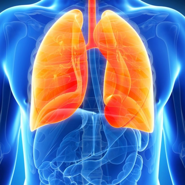 пневмония здоровые легкие картинка квартире интерьер